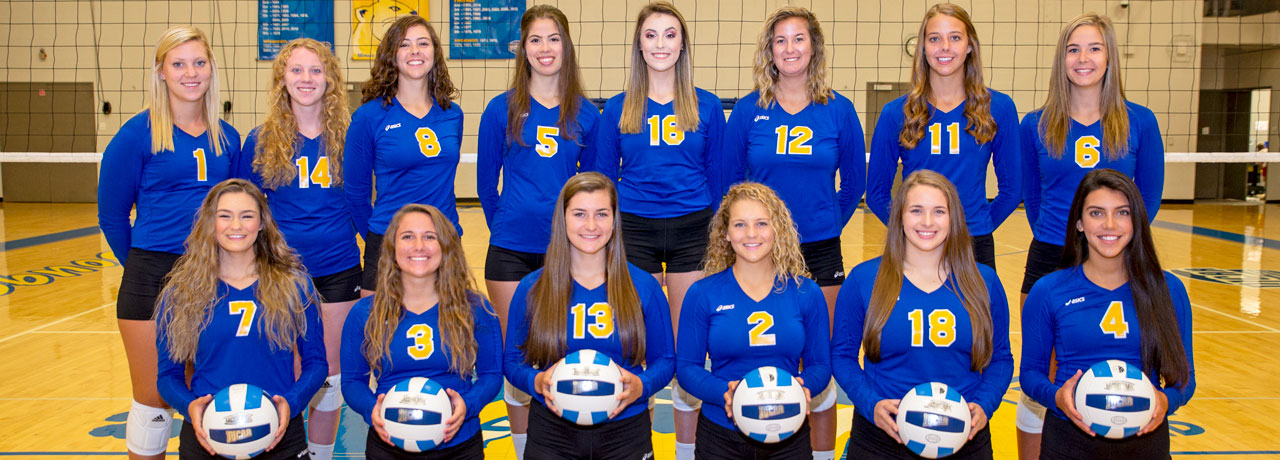 2018-2019 Volleyball Team Picture